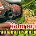 ปวดเมื้อยตามร่างกาย ลอง 7 อาหารไทยนี้ อุดมไปด้วยแคลเซียม บำรุงกระดูกและฟัน
