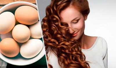 Utiliser l'œuf pour le soin de nos cheveux
