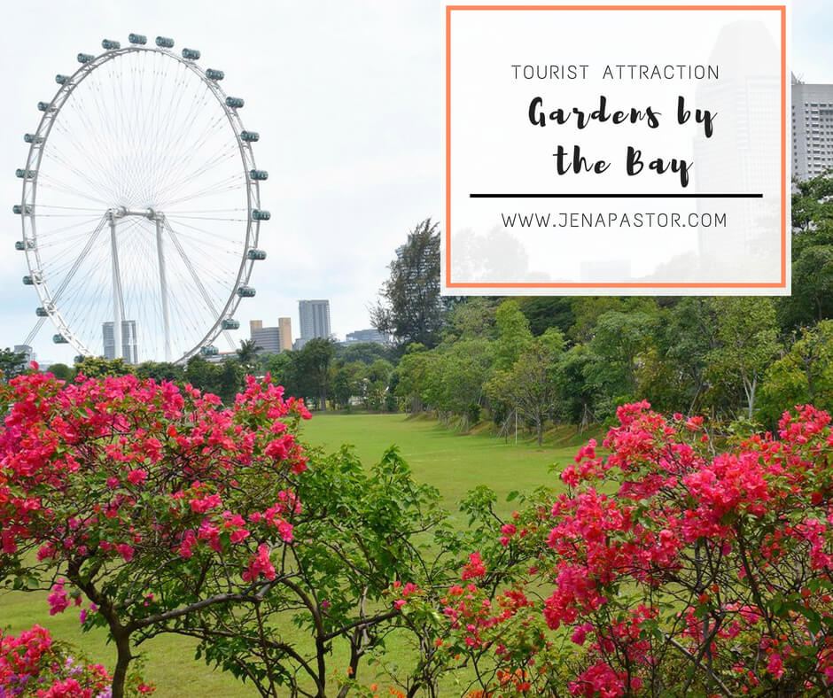 gardens by the bay singapore, singapore flyer
