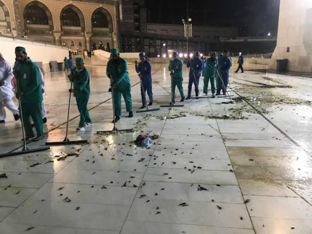 Masjidil Haram 'Diserbu' Ribuan Ekor Serangga