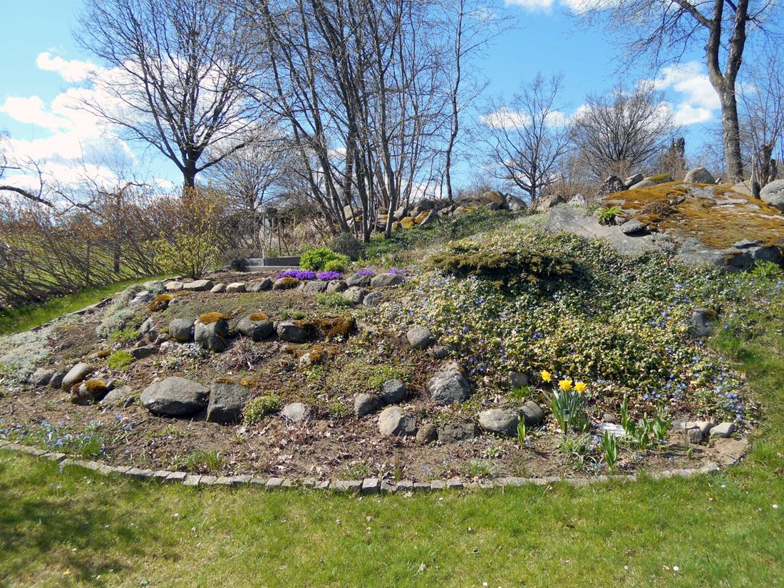 Il giardino, 20 aprile 2016