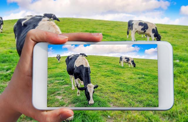 www.agriculturalinformation4u.com