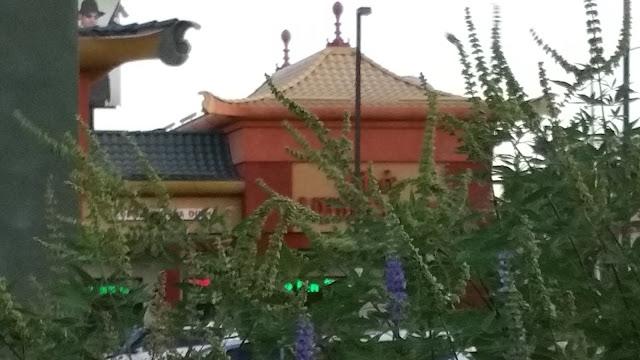 Las Vegas Chinatown - Chinatown Report