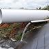 Ontwikkeling toepassing poeder actief koolstof