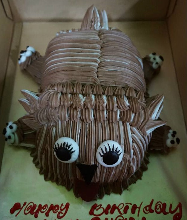 Birthday Celebration For My Son @ AEON Molly Fantasy