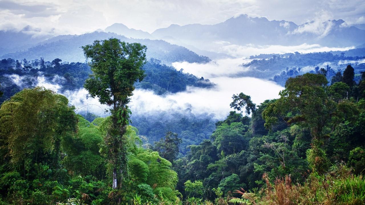 Картинки высокого разрешения красивая природа стран востока