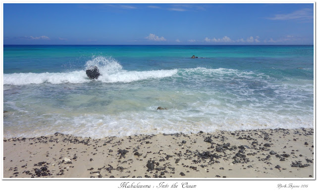 Makalawena: Into the Ocean