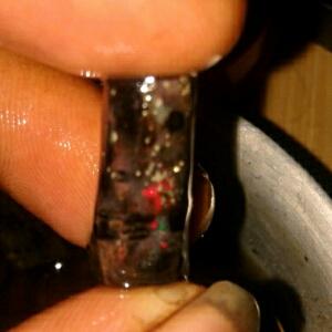 cara mudah merawat black opal