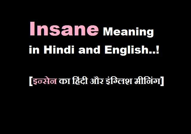 Insane Meaning in Hindi and English