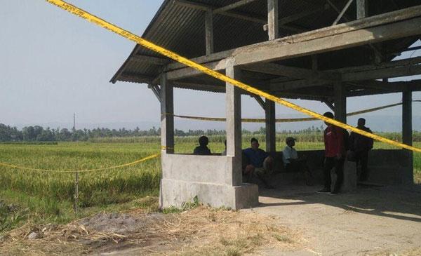 ditemukan-mayat-perempuan-penuh-luka-di-daerah-persawahan-bandul