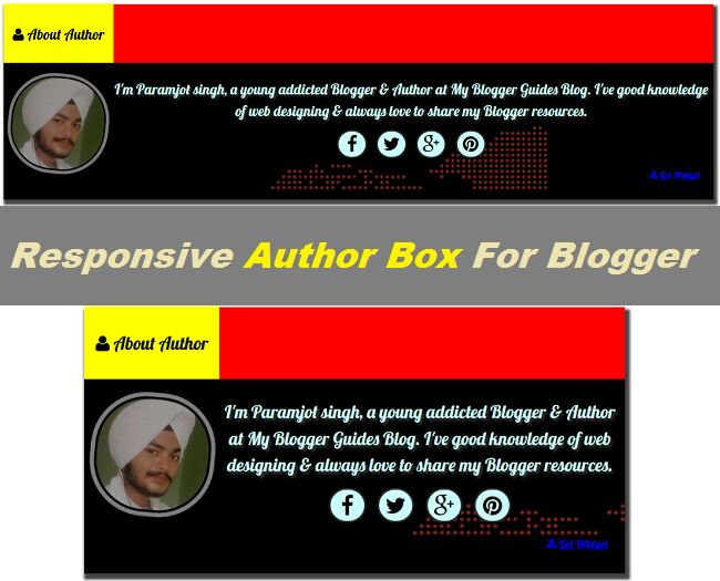 Stylish Responsive About Author Box for Blogger