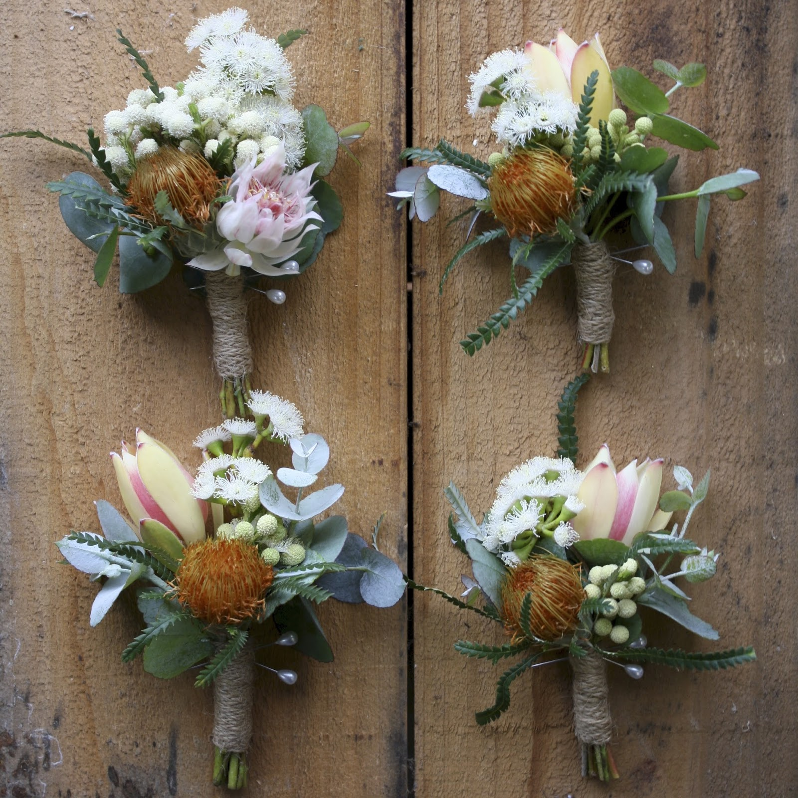 Swallows nest farm native november wedding in soft blush colours some fluffy white flowering gum makes an appearance too dryandra are great for boutonnieres and just imagine these on a blue suit great colour mightylinksfo