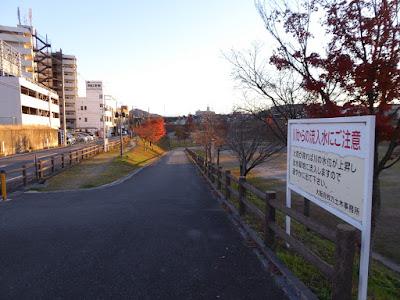 打上川治水緑地・モミジの紅葉
