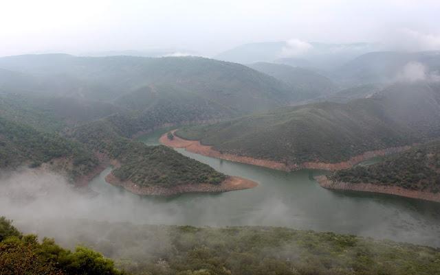 Berrea en el Parque Nacional de Monfragüe. Salto del Gitano con niebla