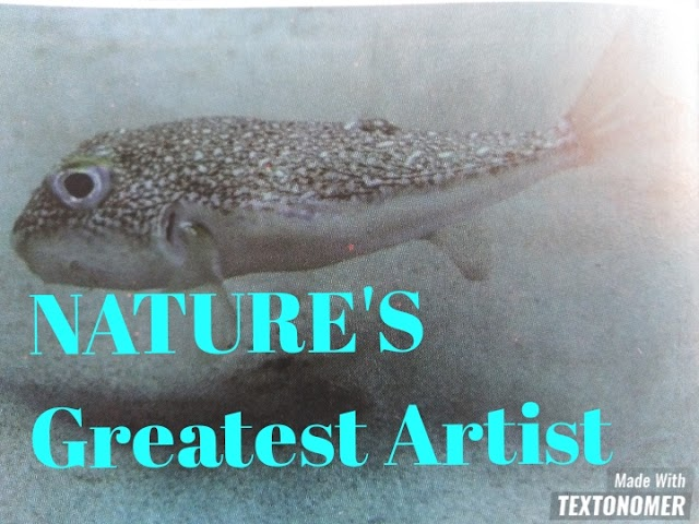 Nature's Greatest Artist