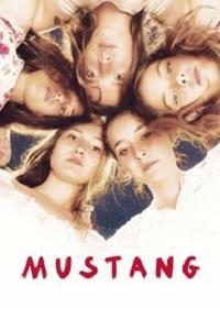 Watch Mustang Online Free in HD