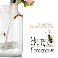"Short Audio Horror Story ""Murmurs of a Voice Foreknown"""