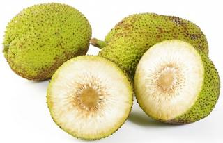 Buah sukun yaitu buah yang terkenal dari kawasan Pasifik Selatan 10+4 Manfaat & Khasiat Buah Sukun untuk Kesehatan