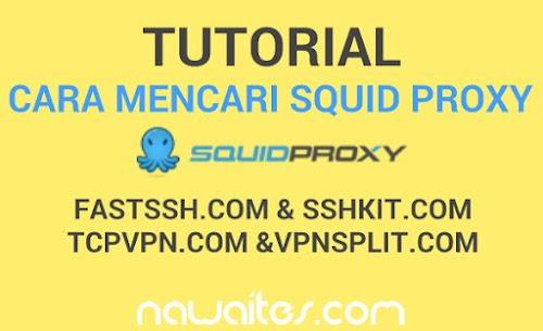 Cara Mudah Mencari Squid Proxy Hanya 5 Menit