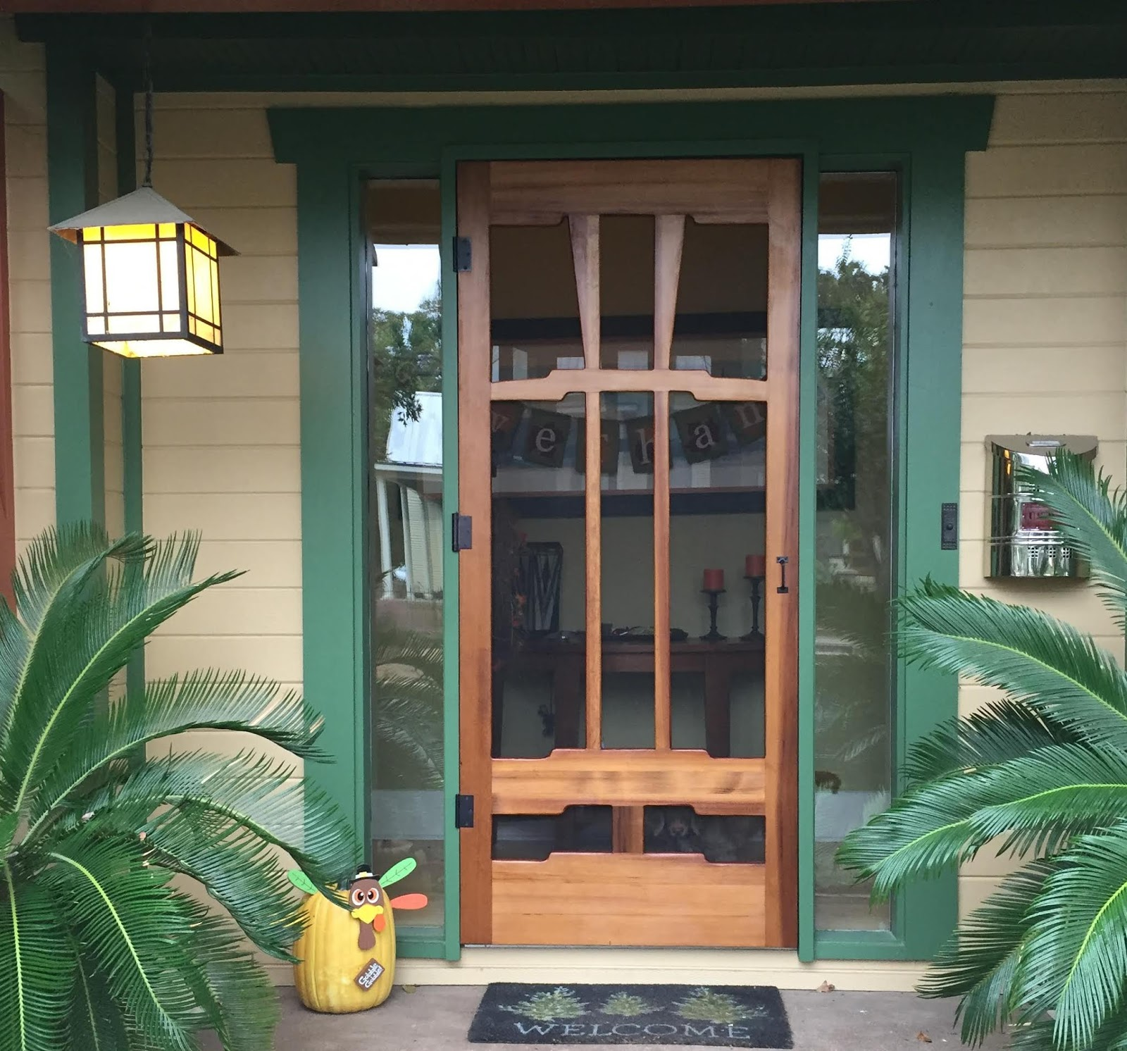 Choosing The Right Screen Door