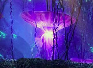 Pandora Forest Escape Juego