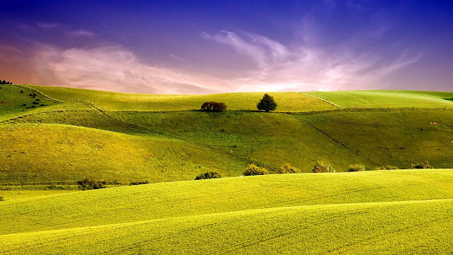 green meadow blue sky peace of mind wallpapers