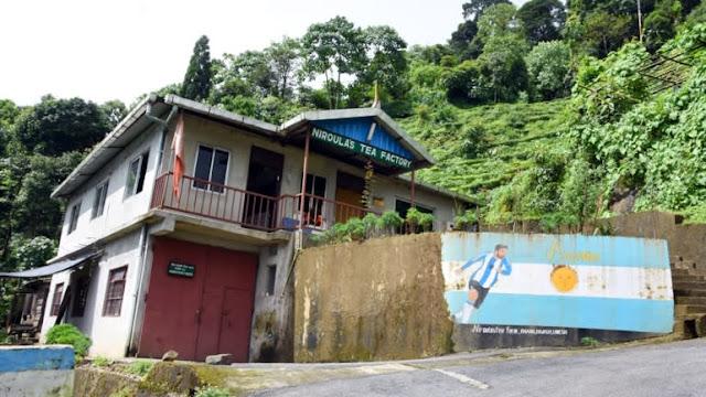 Niroula's Tea Factory in Chota Poobong Darjeeling