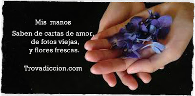 Mis manos saben de cartas de amor,de fotos viejas y flores frescas
