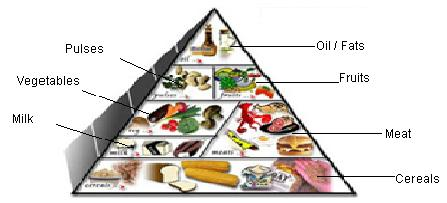 Diet plan for diabetic patient in india also tabncap healthcare rh tabncapspot