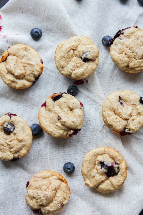 These healthy Sprouted Wheat Blueberry Yogurt Muffins are the perfect quick breakfast or snack and they're ready to eat in just 30 minutes. What's not to love?
