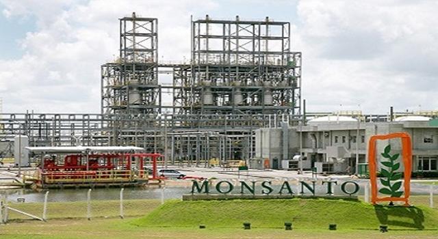 Resultado de imagem para bahia Monsanto