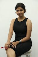 Palli Paruvathile Movie Press Meet  0003.jpgEvents