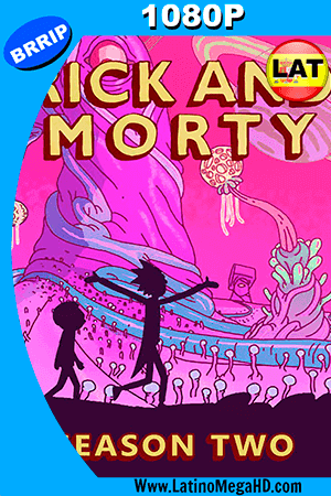 Rick And Morty (2015) Temporada 2 Latino FULL HD 1080P ()