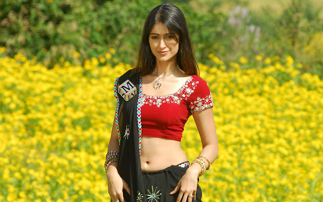 Ileana D'Cruz Images, Hot Photos & HD Wallpapers