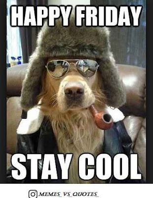 Stay Cool On Friday