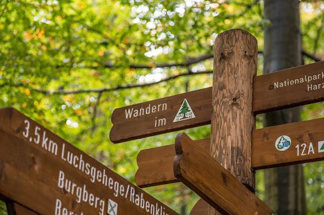 Drei-Täler-Tour  Themenwanderweg Bad Harzburg  Wandern im Harz  Baumwipfelpfad - Radauwasserfall - Eckertalsperre 02