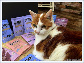 Blink Cat Food Review @BionicBasil® Amber 2