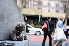 Oso marrón de peluche sentado, triste, en un banco