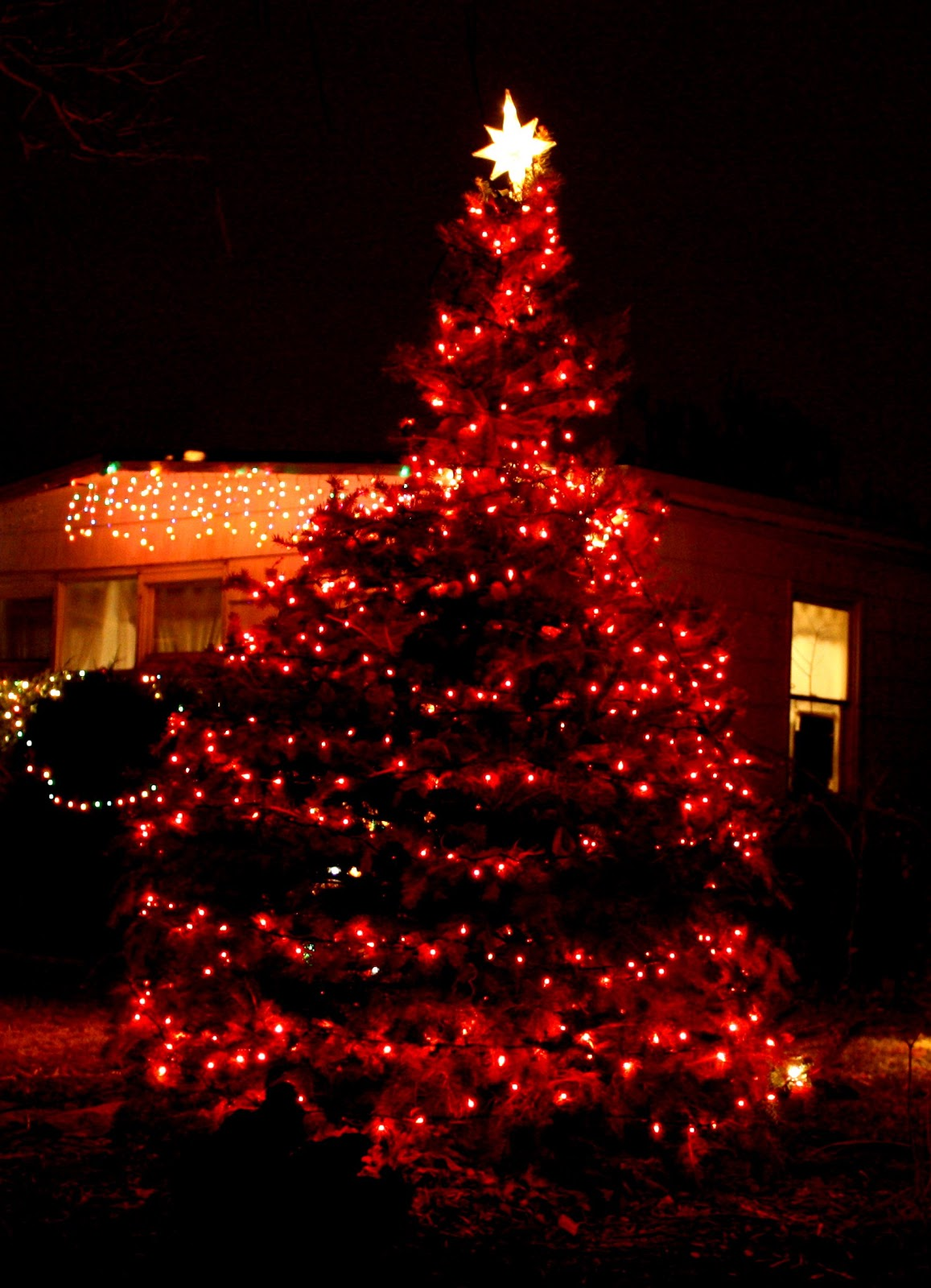 christmas_tree_with_red_lightsjpg - Why Is Christmas Called Xmas