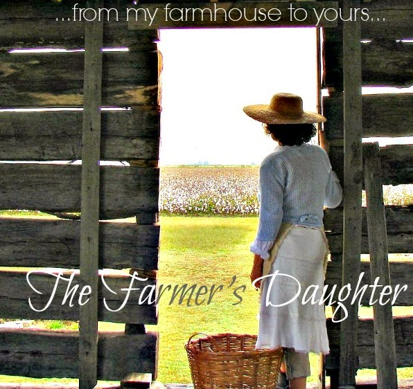 The Country Farm Home: Arkansas PBS TV Filming In Our