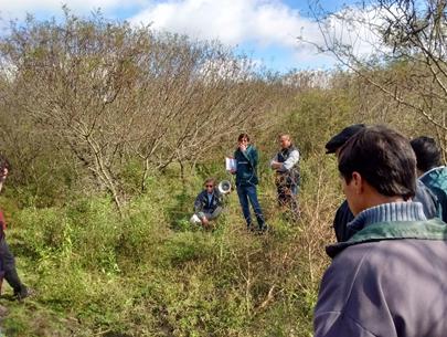 Bosques Nativos: Manejo de renovales, clave para el desarrollo sustentable.