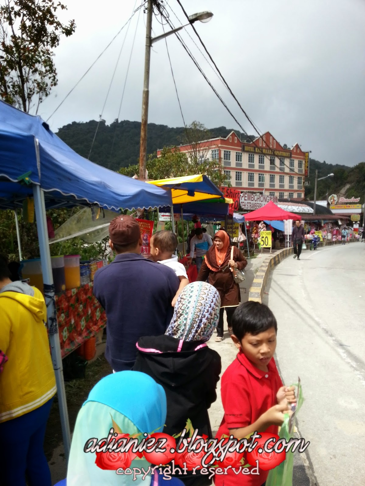 kea farm cameron highlands