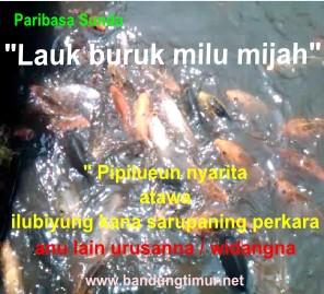 DP BBM Paribasa Sunda, lauk buruk milu mijah, paribasa sunda