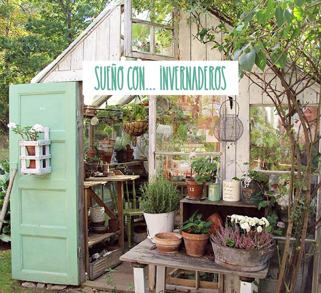 Milowcostblog sue o con invernaderos - Invernadero en terraza ...