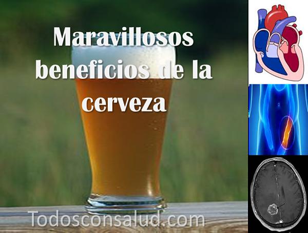 Cerveza, propiedades y beneficios