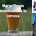 Cerveza, 8 beneficios para la salud que quizá no conocias