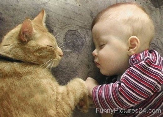 Funny Posters HD Wallpapers baby funny pictures