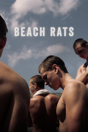 Poster Beach Rats 2017