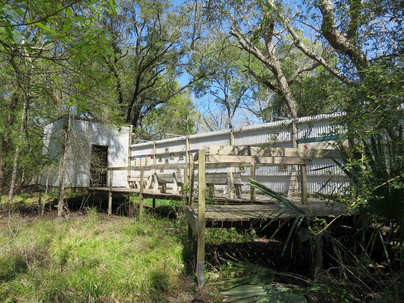 Texas Nature: Armand Bayou Nature Center Part 2