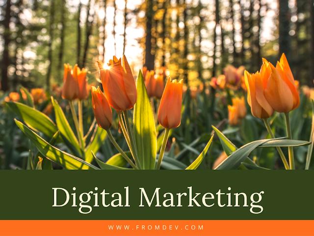 Tech Talent Today: Understanding What Digital Marketers Do
